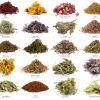 Ημερίδα για αρωματικά – φαρμακευτικά φυτά στην Ελασσόνα