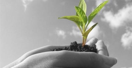 Ξεκίνησαν οι αιτήσεις στα προγράμματα γεωργικών εκμεταλλεύσεων