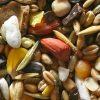 Ανταλλαγή παραδοσιακών σπόρων από τον Εξωραϊστικό Σύλλογο Τσαριτσάνης