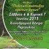 Μια μεγάλη διοργάνωση από το Δίκτυο ΜΚΟ Θεσσαλίας στο Περτούλι Τρικάλων
