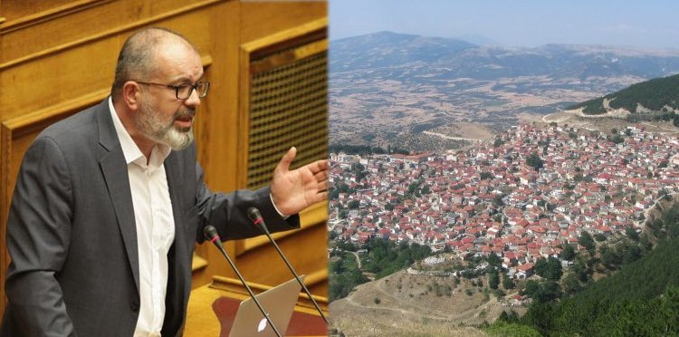 Αναφορά Μπαργιώτα στον Υπουργό Περιβάλλοντος για καυσόξυλα στην κοινότητα Λιβαδίου