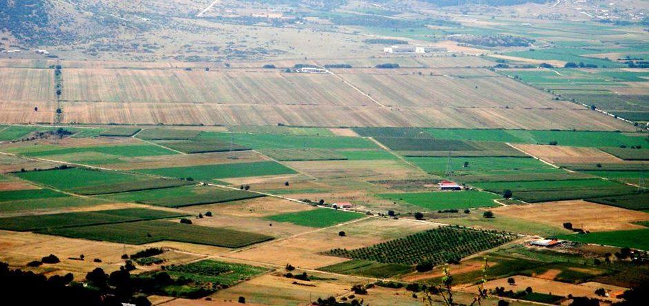 Ανακοίνωση της Ομάδας Πρωτοβουλίας για την αναβίωση του πρώην Ομαδικού Αμπελώνα