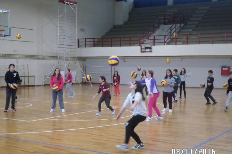 Ημερίδα εκπαιδευτικών για την πετοσφαίριση (βόλεϊ) στην Ελασσόνα