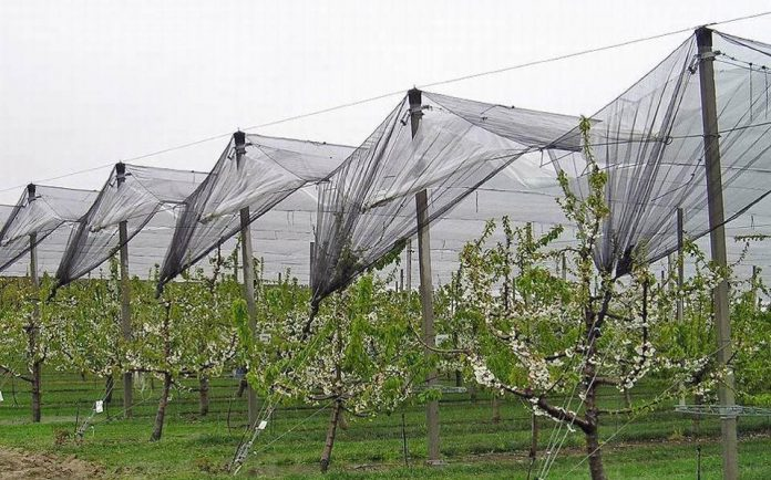 Μαξ. Χαρακόπουλος προς Υπ. Αγροτικής Ανάπτυξης: Πότε θα υπάρξει αναγγελία ζημιών στην Ελασσόνα;