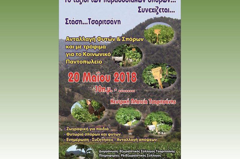 Ανταλλαγή και διάθεση παραδοσιακών σπόρων στην Τσαριτσάνη