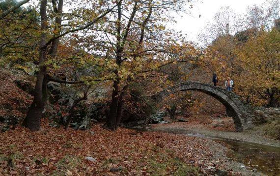 Ρεπορτάζ της ΕΡΤ από το «μαντάνι της Γιάνναινας» στην Ελασσόνα