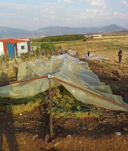 Ο Αγροκτηνοτροφικός Σύλλογος Ολύμπου για τις ζημιές στη Δολίχη